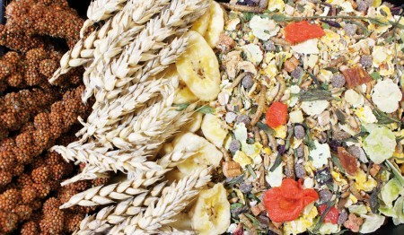 JR Farm Food Hamster Adult 500 g