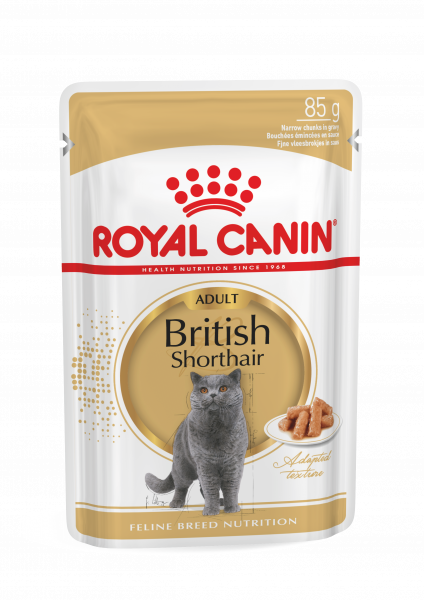 Royal Canin British Shorthair (Sauce) 12 x 85g