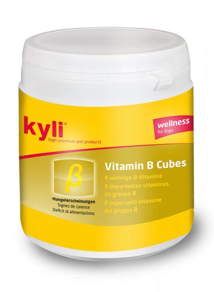 Vitamin B Cubes 120g